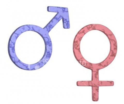 Gender Correspondences