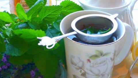 Liver Cleanser Tea Blend