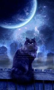 Benefits of Familiars • Luna's Grimoire